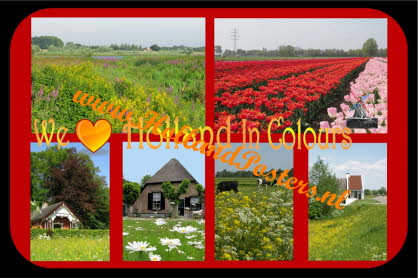 We love holland in colours HP 11 S